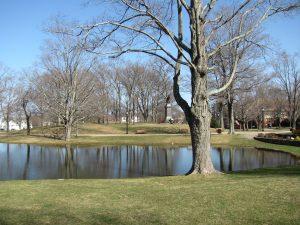 Whitman Park, MA